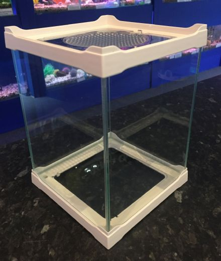 Display & Breeding Small Stack-able Glass Tank 16 x 16 x 21cm